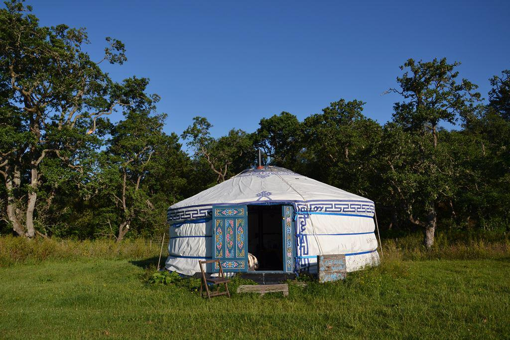 Mongolian yurt in countryside